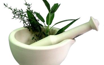 herbal_plants